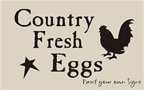 Chicken & Egg Essay - 827 Words Bartleby