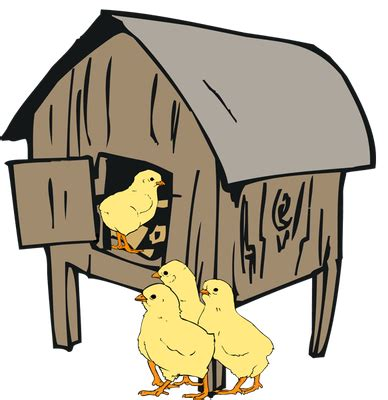Essay on poultry farming